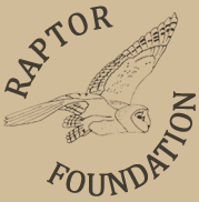 Raptor Foundation